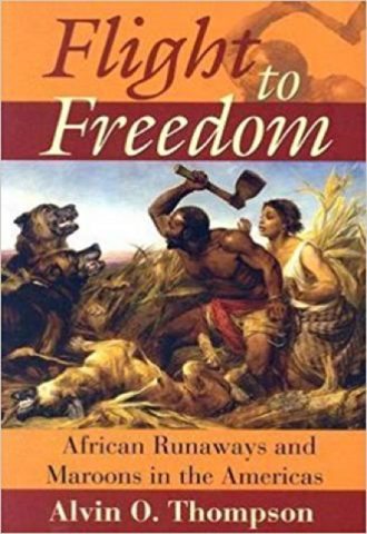 Flight to Freedom African Runaways and Maroons in the Americas_440x640