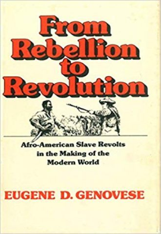 The Afrikan Library_From Rebellion to Revolution- Afro-American Slave Revolts in the Making of the Modern World_440x640 - F Covers - 17666